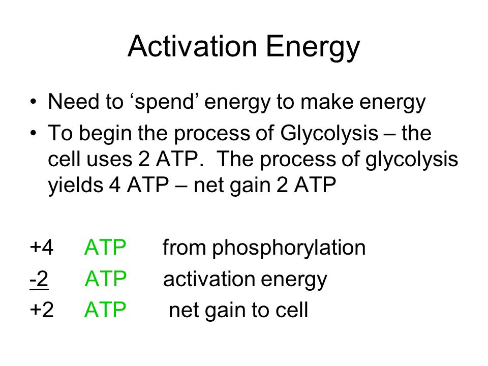 Glycolysis: the Lysis or breaking apart of glucose occurs in the cytoplasm of all cells.