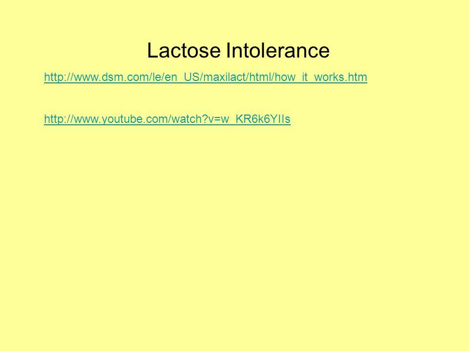 Lactose Intolerance http://www.dsm.com/le/en_US/maxilact/html/how_it_works.htm http://www.youtube.com/watch?v=w_KR6k6YIIs