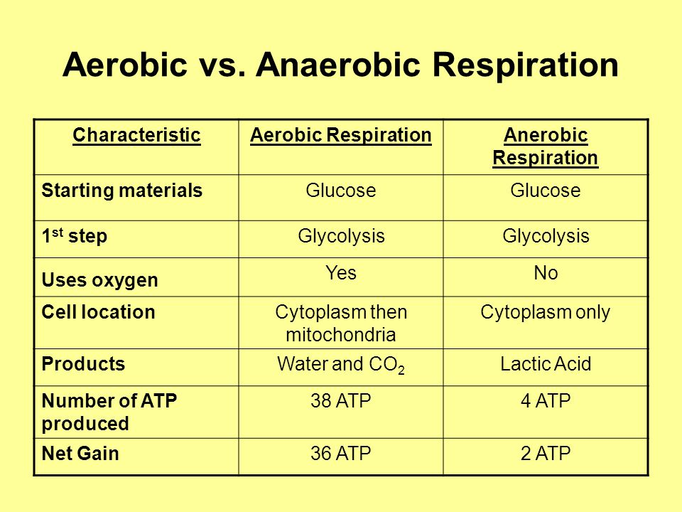 Aerobic vs. Anaerobic Respiration CharacteristicAerobic RespirationAnerobic Respiration Starting materialsGlucose 1 st stepGlycolysis Uses oxygen YesN