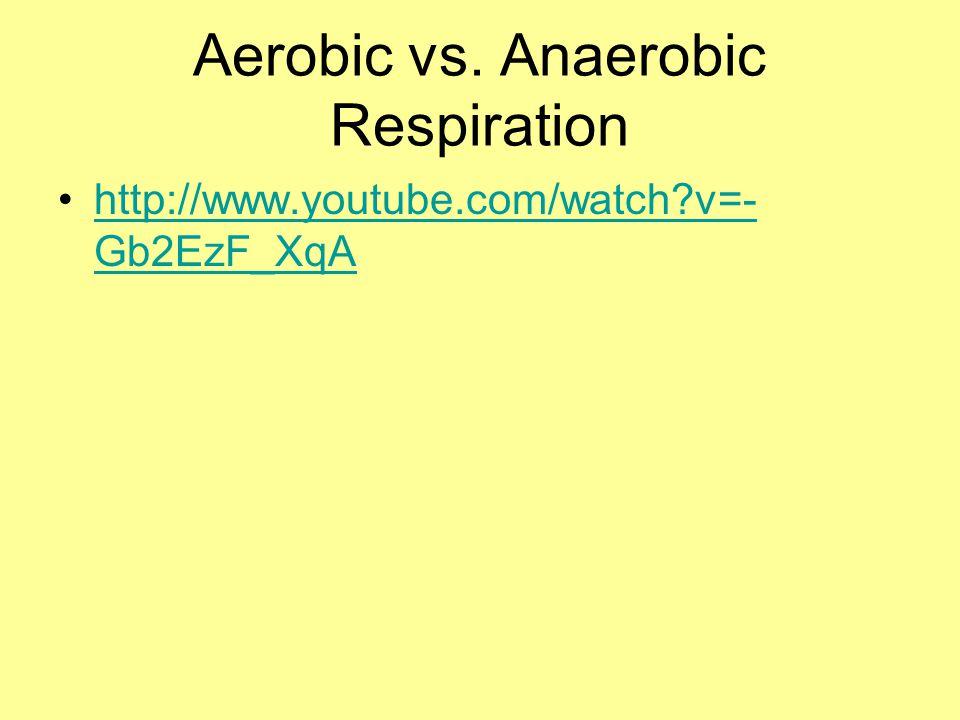 Aerobic vs. Anaerobic Respiration http://www.youtube.com/watch?v=- Gb2EzF_XqAhttp://www.youtube.com/watch?v=- Gb2EzF_XqA