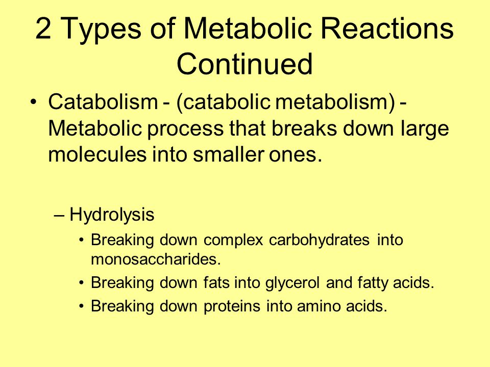 2 Types of Metabolic Reactions Continued Catabolism - (catabolic metabolism) - Metabolic process that breaks down large molecules into smaller ones.