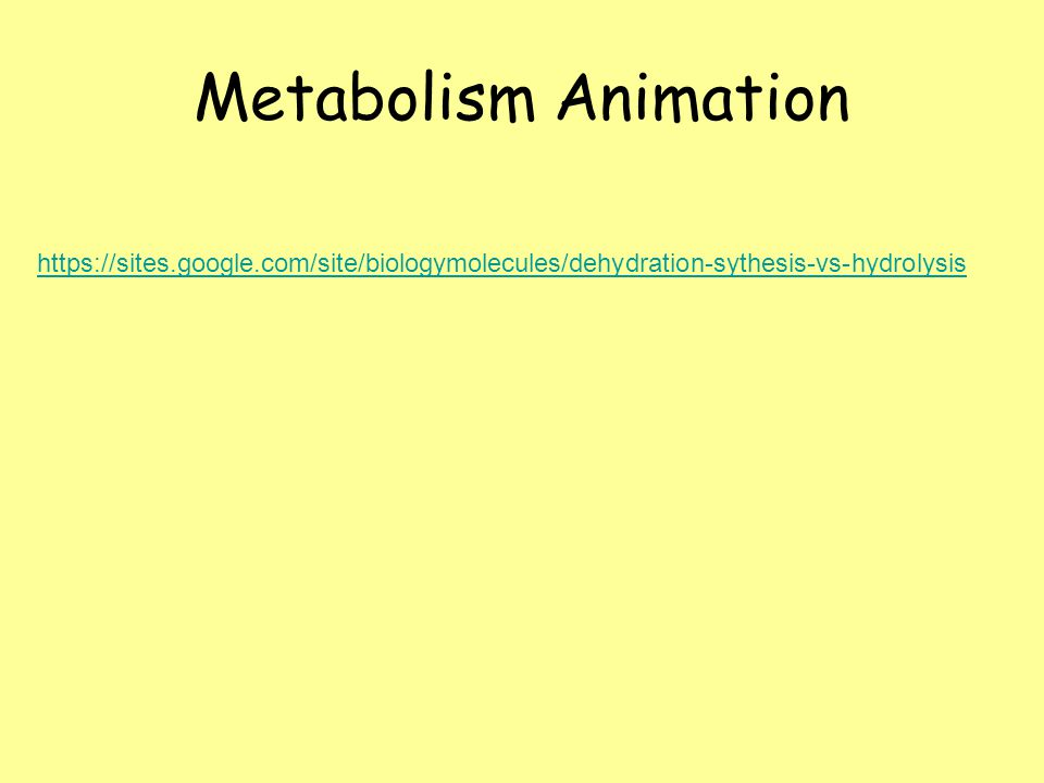 https://sites.google.com/site/biologymolecules/dehydration-sythesis-vs-hydrolysis Metabolism Animation