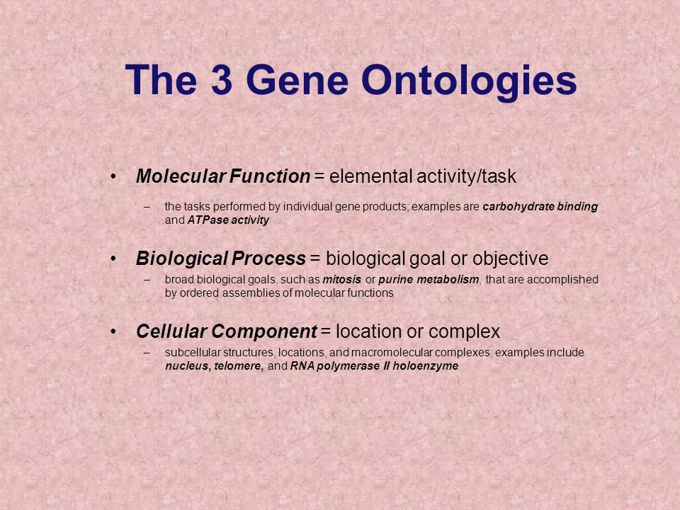 Molecular Function = elemental activity/task –the tasks performed by individual gene products; examples are carbohydrate binding and ATPase activity Biological Process = biological goal or objective –broad biological goals, such as mitosis or purine metabolism, that are accomplished by ordered assemblies of molecular functions Cellular Component = location or complex –subcellular structures, locations, and macromolecular complexes; examples include nucleus, telomere, and RNA polymerase II holoenzyme The 3 Gene Ontologies