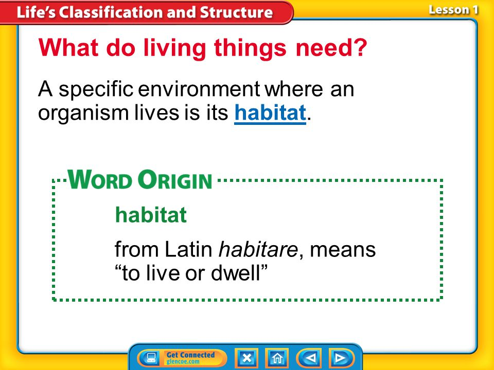 Lesson 1-2 A specific environment where an organism lives is its habitat.habitat What do living things need.