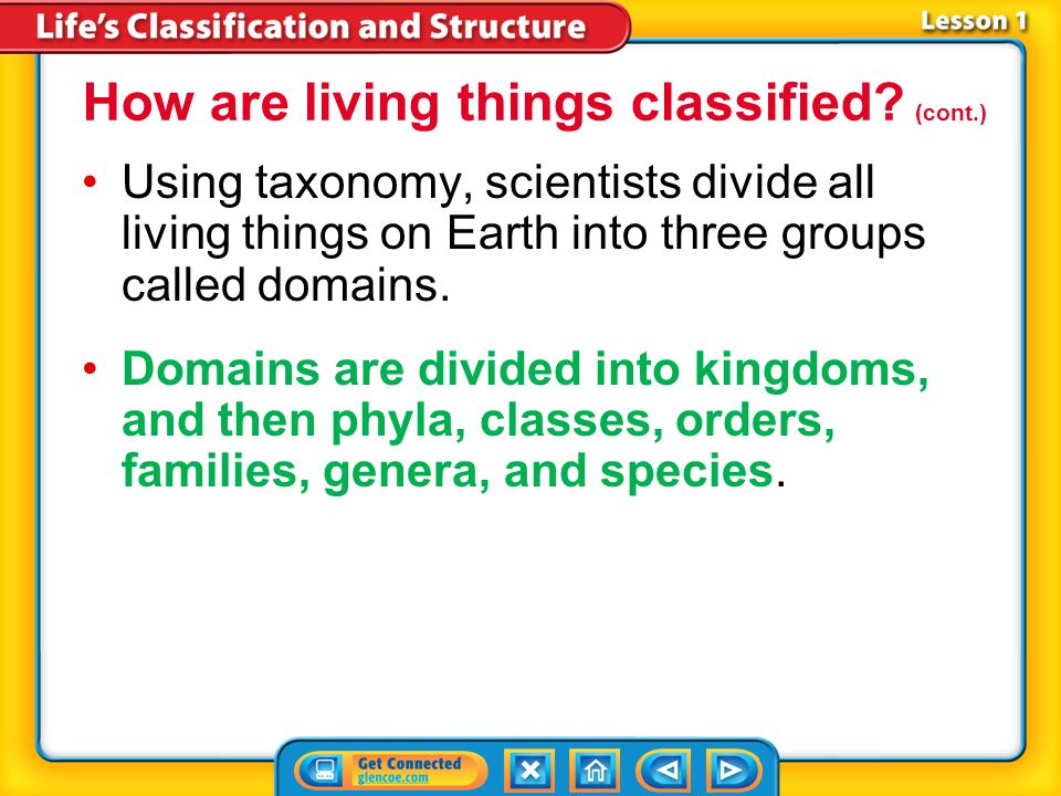 Lesson 1-3 Using taxonomy, scientists divide all living things on Earth into three groups called domains.