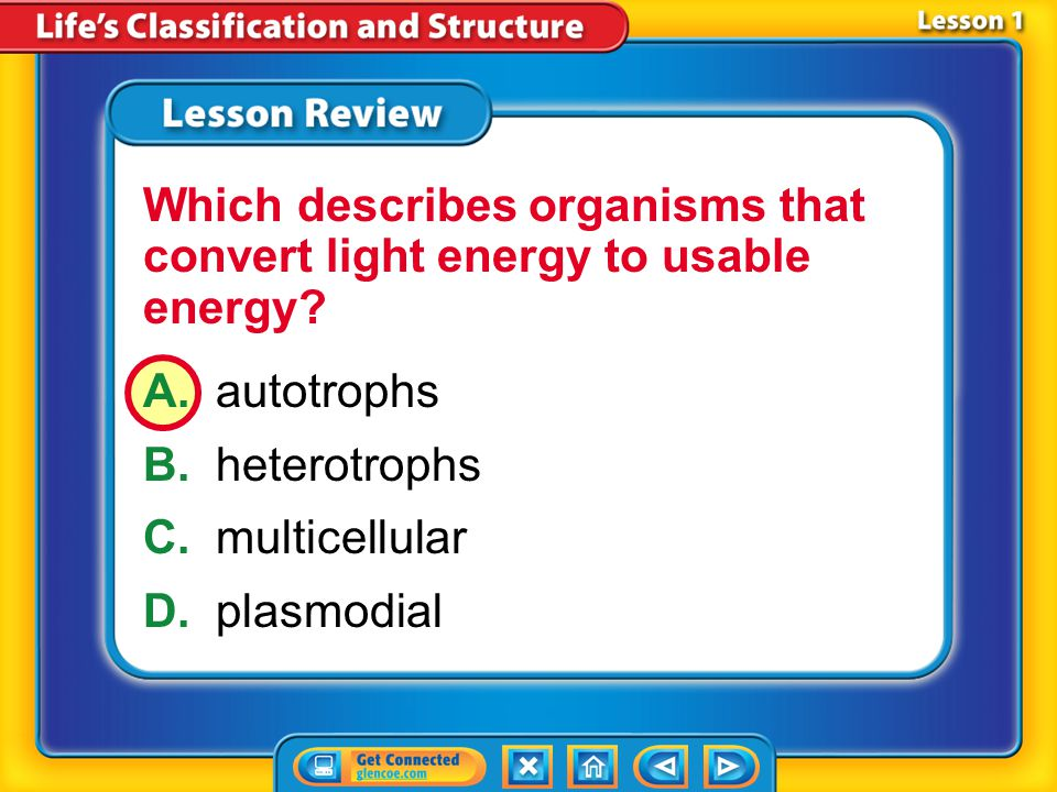Lesson 1 – LR2 A.autotrophs B.heterotrophs C.multicellular D.plasmodial Which describes organisms that convert light energy to usable energy?