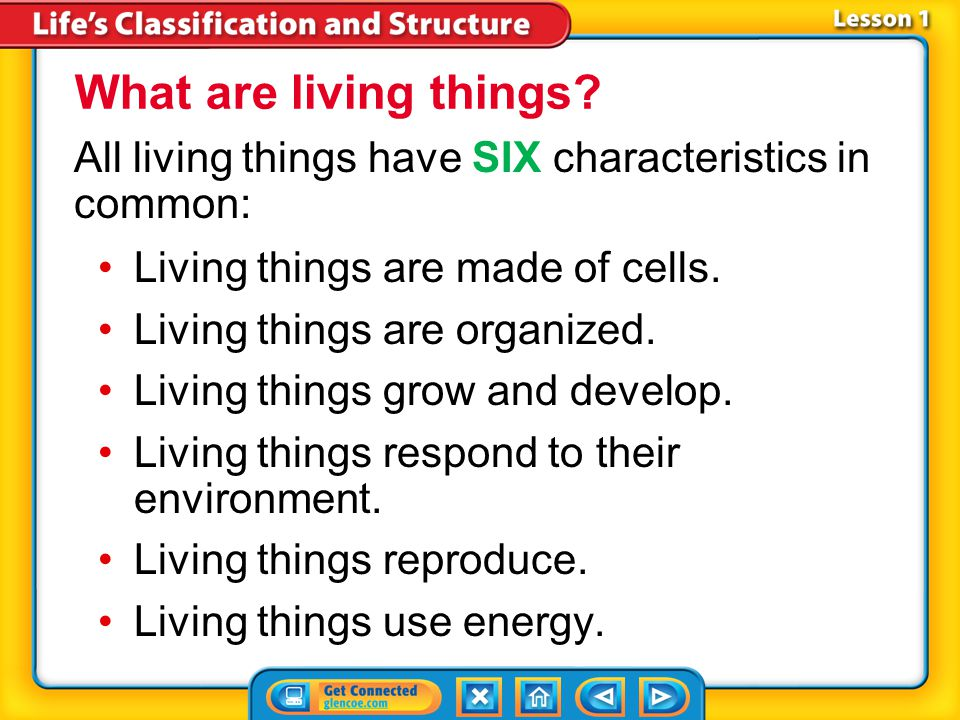 Lesson 1-1 All living things have SIX characteristics in common: Living things are made of cells.