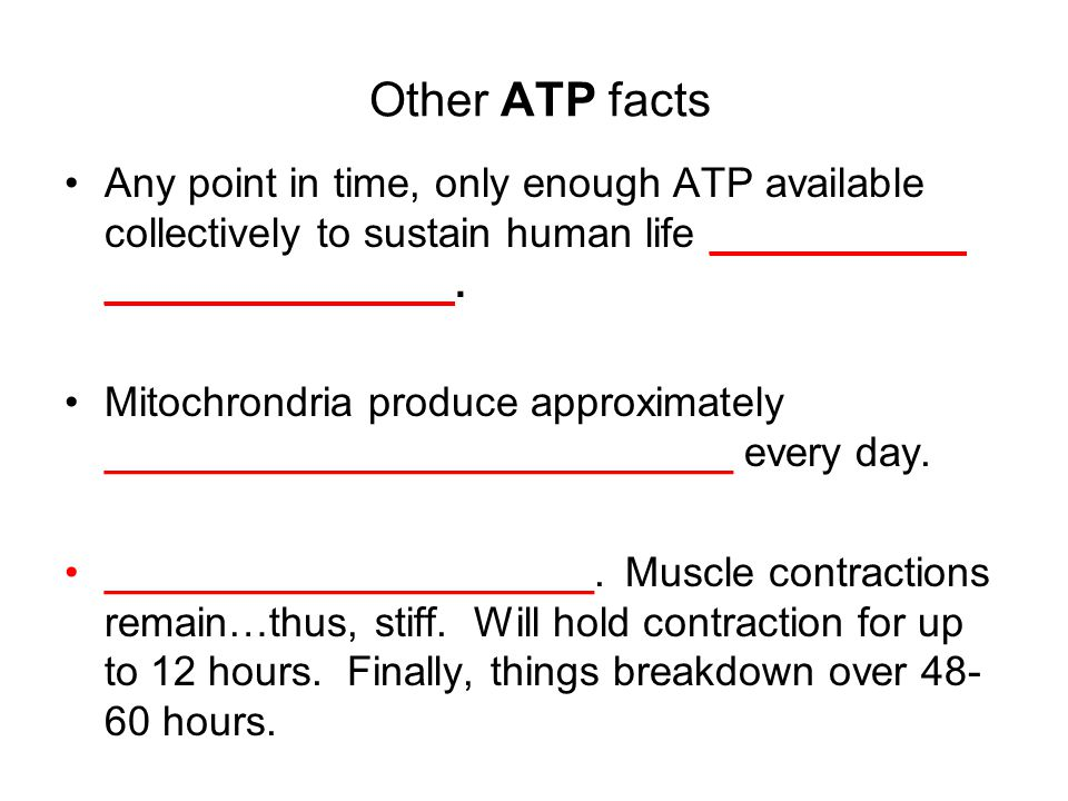 Other ATP facts Any point in time, only enough ATP available collectively to sustain human life ___________ _______________.