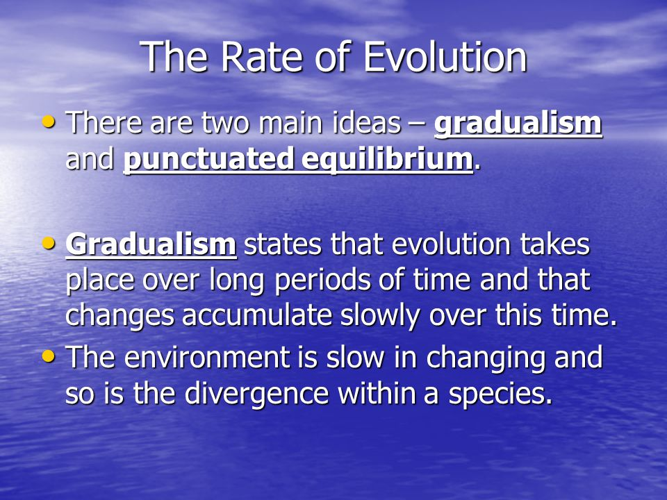 The Rate of Evolution There are two main ideas – gradualism and punctuated equilibrium.