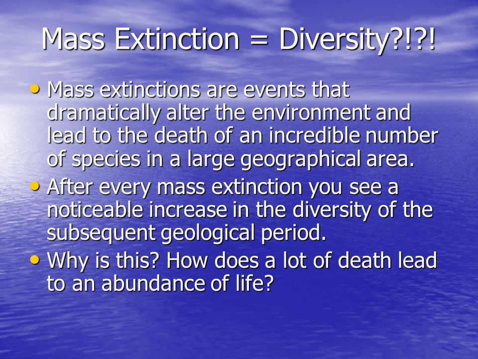 Mass Extinction = Diversity?!?.