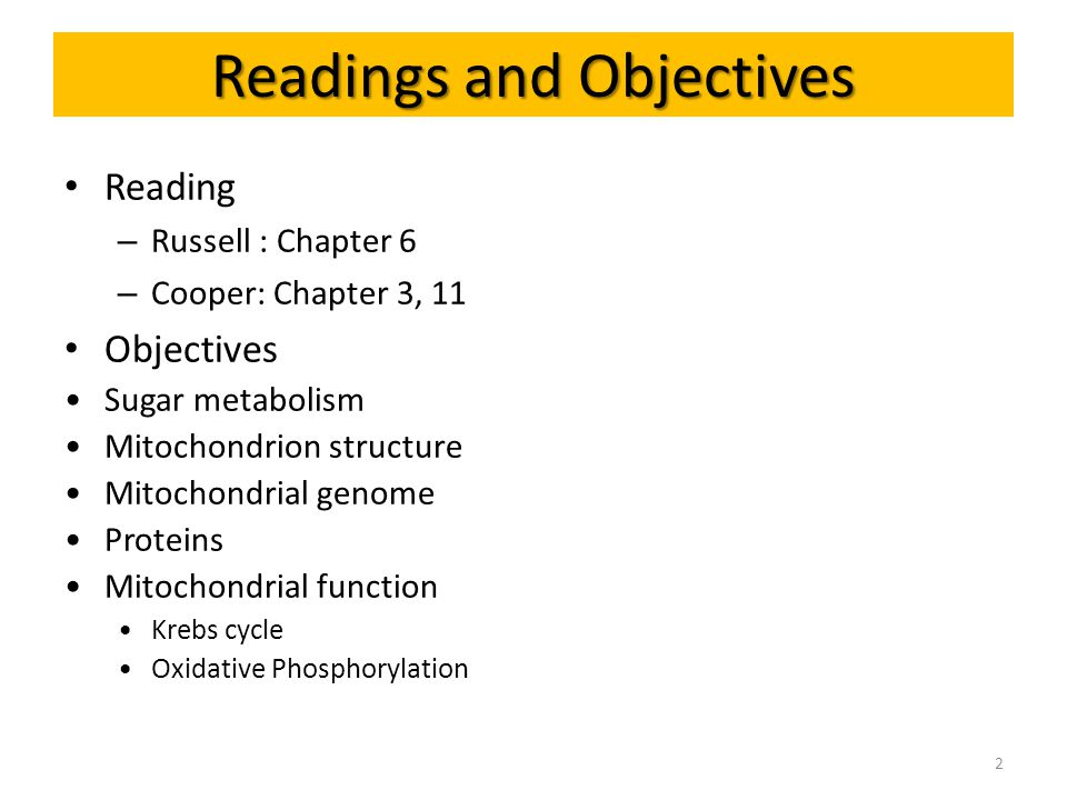 Readings and Objectives Reading – Russell : Chapter 6 – Cooper: Chapter 3, 11 Objectives Sugar metabolism Mitochondrion structure Mitochondrial genome Proteins Mitochondrial function Krebs cycle Oxidative Phosphorylation 2