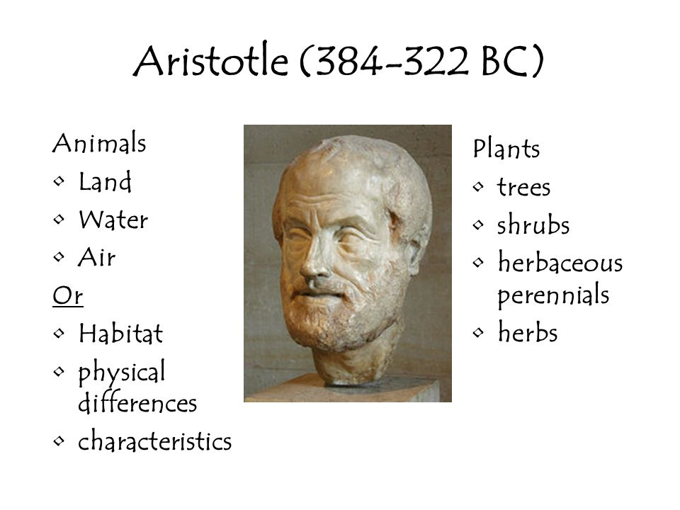 Aristotle (384-322 BC) Animals Land Water Air Or Habitat physical differences characteristics Plants trees shrubs herbaceous perennials herbs