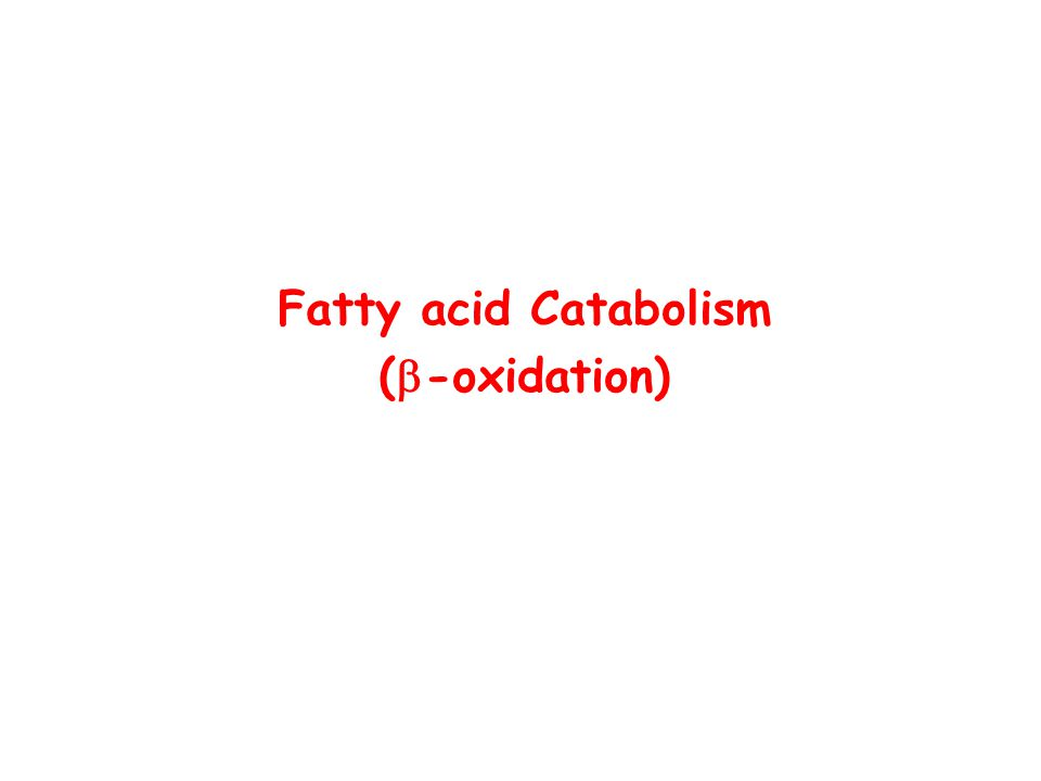 Fatty acid Catabolism (  -oxidation)