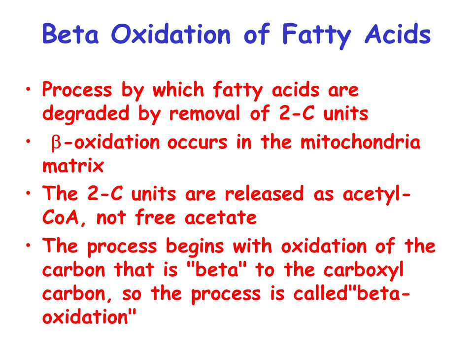 Fatty acids must first be activated by formation of acyl-CoA Acyl-CoA synthetase condenses fatty acids with CoA, with simultaneous hydrolysis of ATP to AMP and PP i Formation of a CoA ester is expensive energetically Reaction just barely breaks even with ATP hydrolysis  G o' ATP hydroysis = -32.3 kJ/mol,  G o' Acyl-CoA synthesis +31.5 kJ/mol.