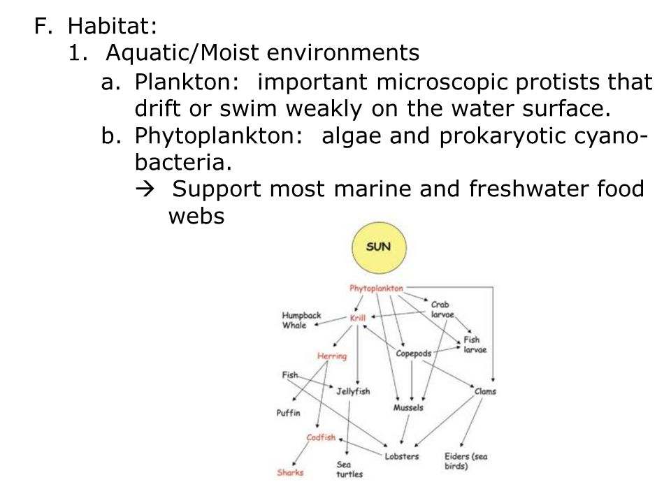 F.Habitat: 1.
