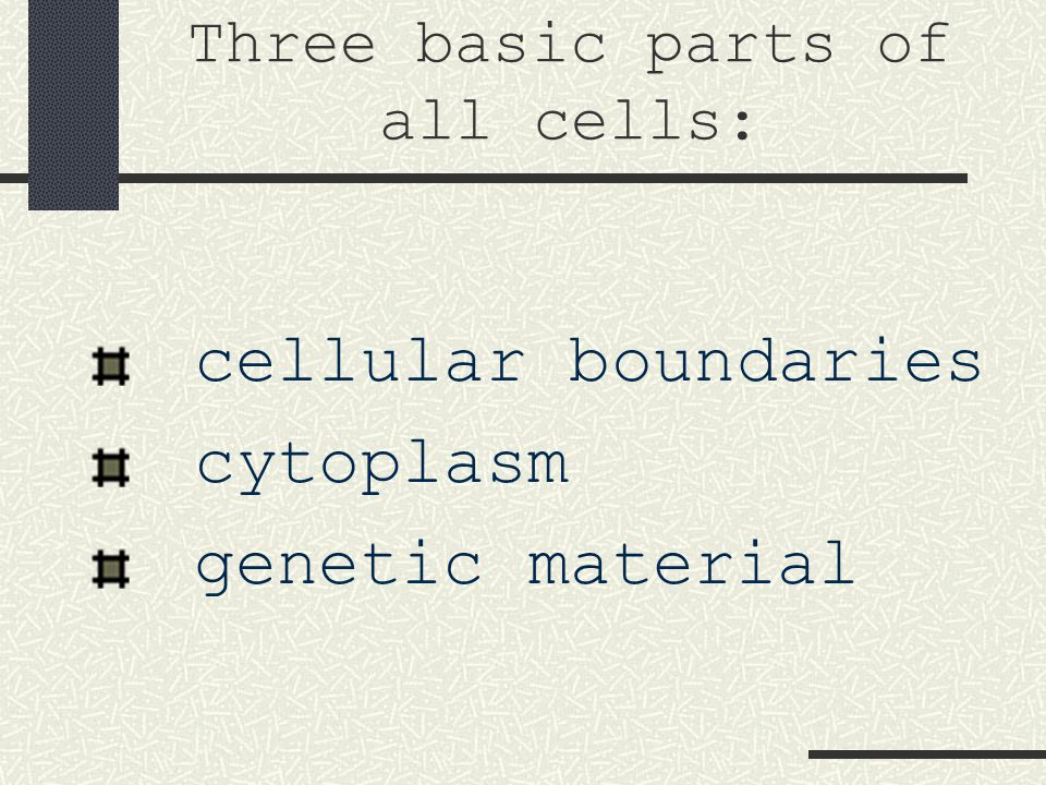Cellular Boundaries All cells have cell membranes.