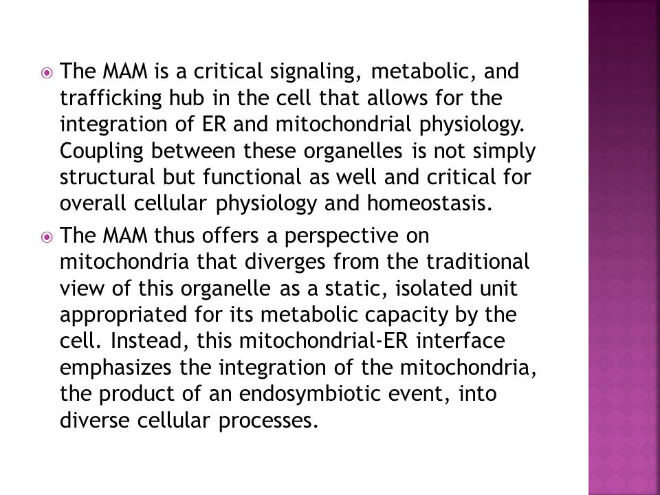  The MAM is a critical signaling, metabolic, and trafficking hub in the cell that allows for the integration of ER and mitochondrial physiology. Coup