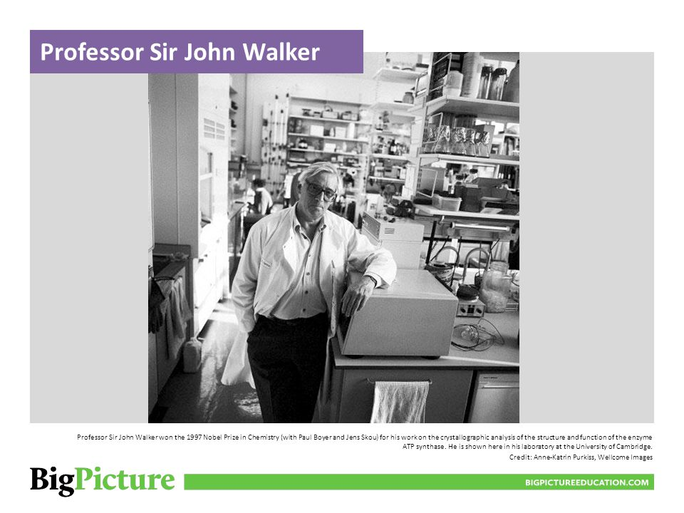 Professor Sir John Walker won the 1997 Nobel Prize in Chemistry (with Paul Boyer and Jens Skou) for his work on the crystallographic analysis of the structure and function of the enzyme ATP synthase.