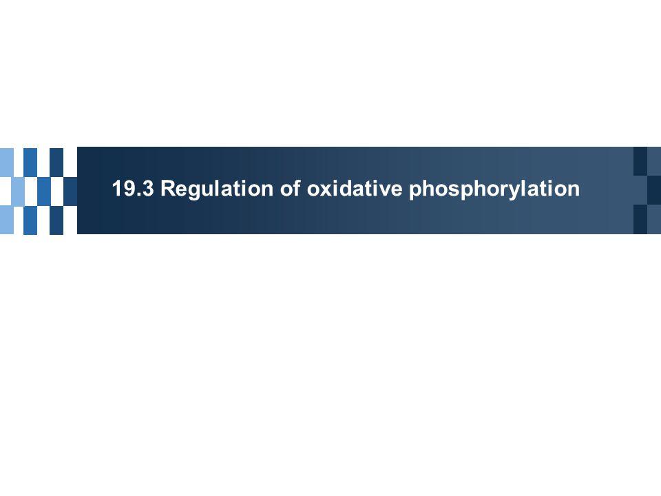 19.3 Regulation of oxidative phosphorylation