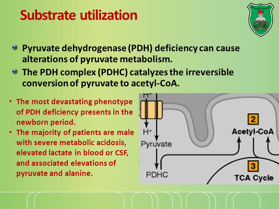 Substrate utilization Pyruvate dehydrogenase (PDH) deficiency can cause alterations of pyruvate metabolism.