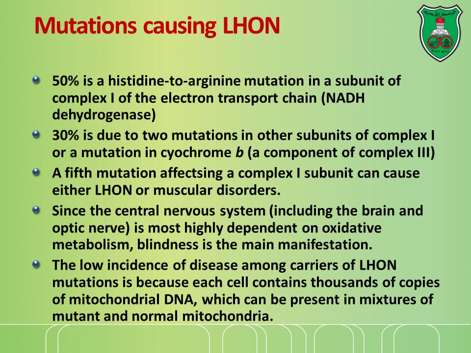 Mutations causing LHON 50% is a histidine-to-arginine mutation in a subunit of complex I of the electron transport chain (NADH dehydrogenase) 30% is due to two mutations in other subunits of complex I or a mutation in cyochrome b (a component of complex III) A fifth mutation affectsing a complex I subunit can cause either LHON or muscular disorders.