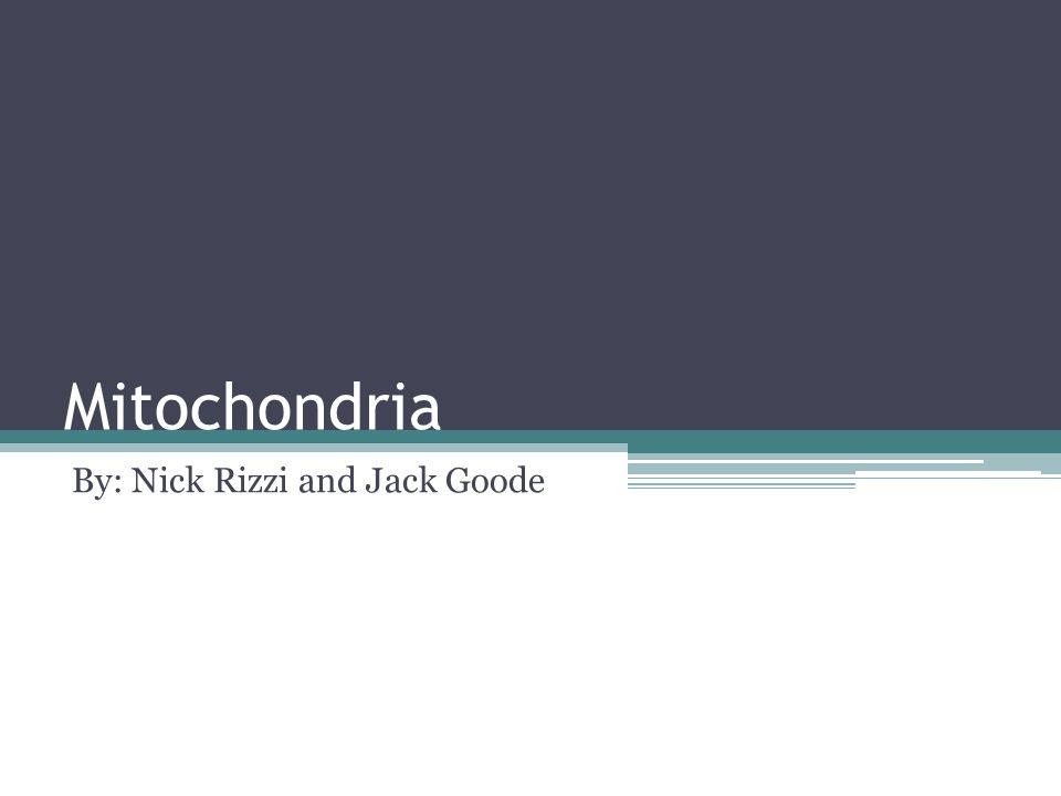 Mitochondria By: Nick Rizzi and Jack Goode