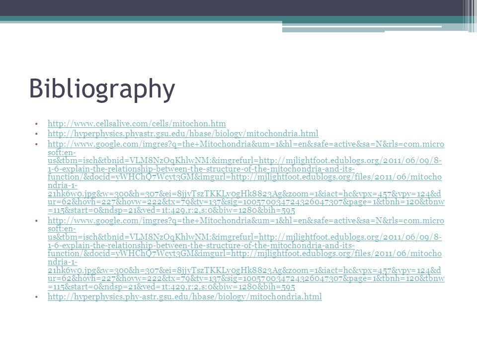 Bibliography http://www.cellsalive.com/cells/mitochon.htm http://hyperphysics.phyastr.gsu.edu/hbase/biology/mitochondria.html http://www.google.com/im