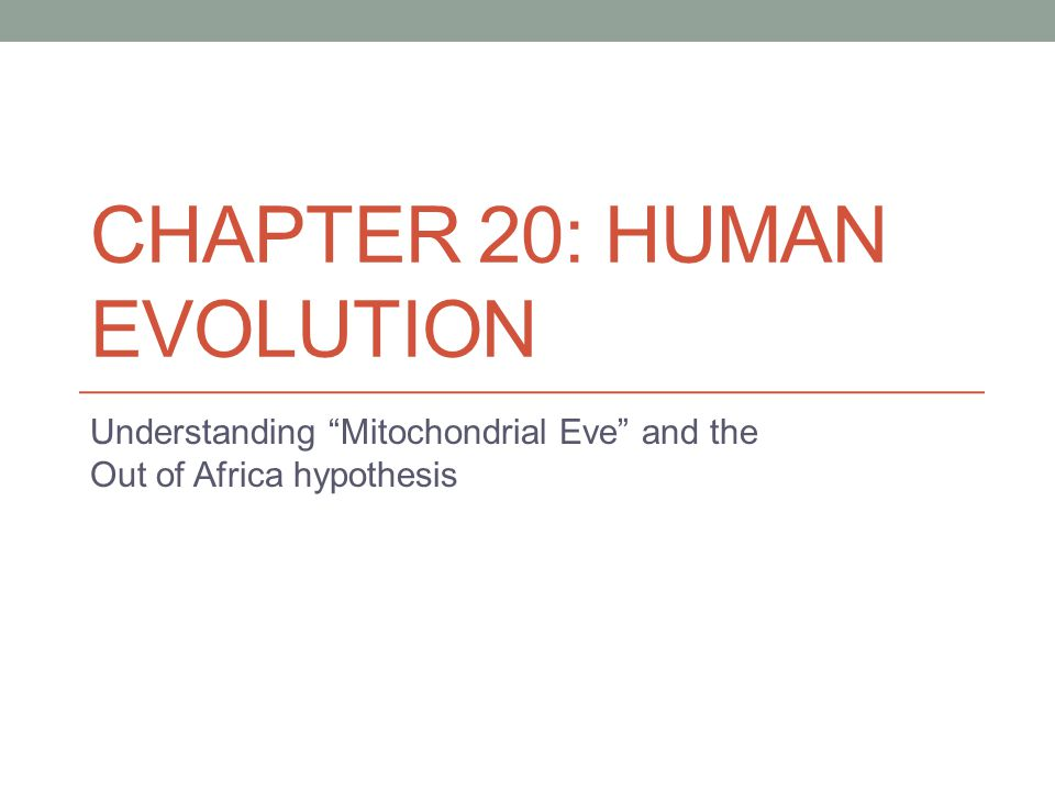 """CHAPTER 20: HUMAN EVOLUTION Understanding """"Mitochondrial Eve"""" and the Out of Africa hypothesis"""
