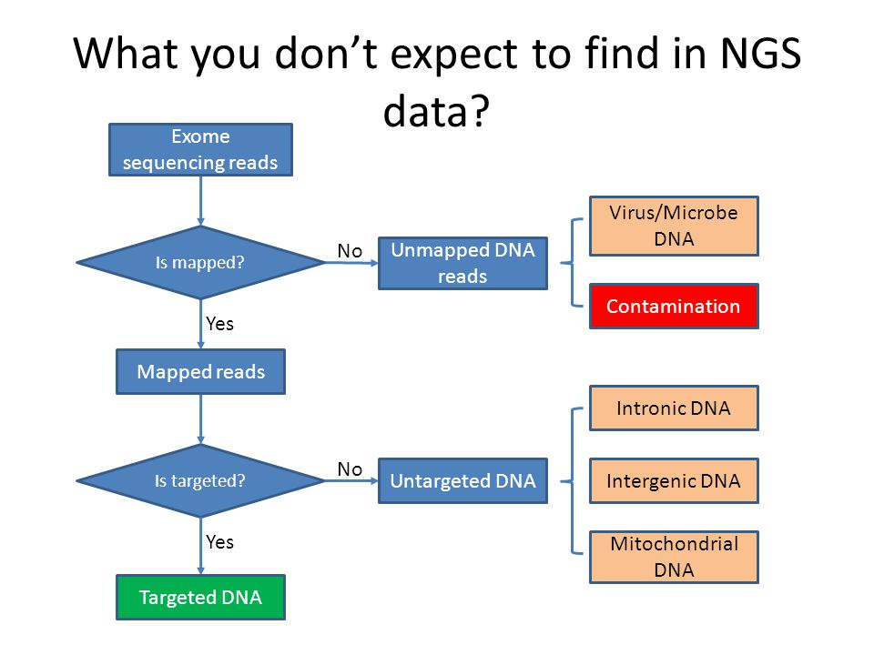What you don't expect to find in NGS data. Is targeted.