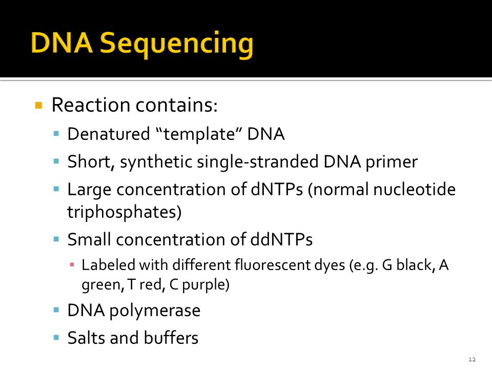 Reaction contains:  Denatured template DNA  Short, synthetic single-stranded DNA primer  Large concentration of dNTPs (normal nucleotide triphosphates)  Small concentration of ddNTPs ▪ Labeled with different fluorescent dyes (e.g.