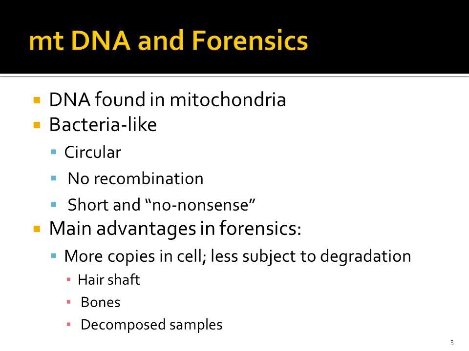  DNA found in mitochondria  Bacteria-like  Circular  No recombination  Short and no-nonsense  Main advantages in forensics:  More copies in cell; less subject to degradation ▪ Hair shaft ▪ Bones ▪ Decomposed samples 3