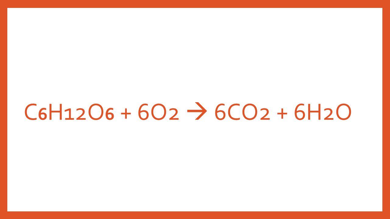 C 6 H12O 6 + 6O2  6CO2 + 6H2O