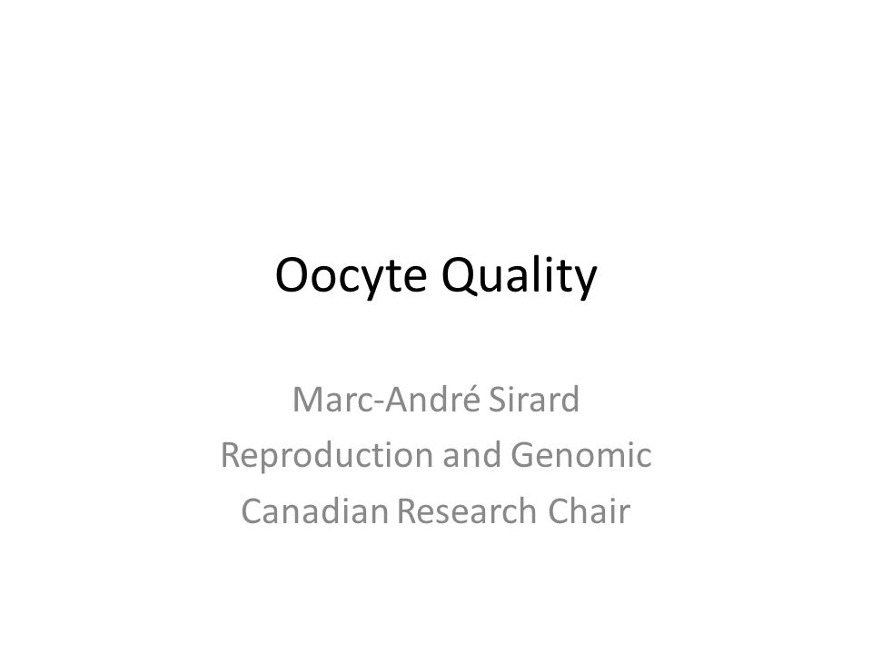Oocyte Quality Marc-André Sirard Reproduction and Genomic Canadian Research Chair