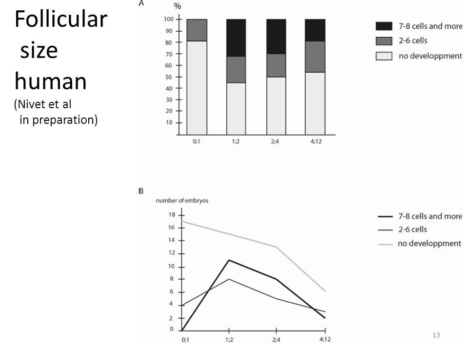 Follicular size human (Nivet et al in preparation) 13