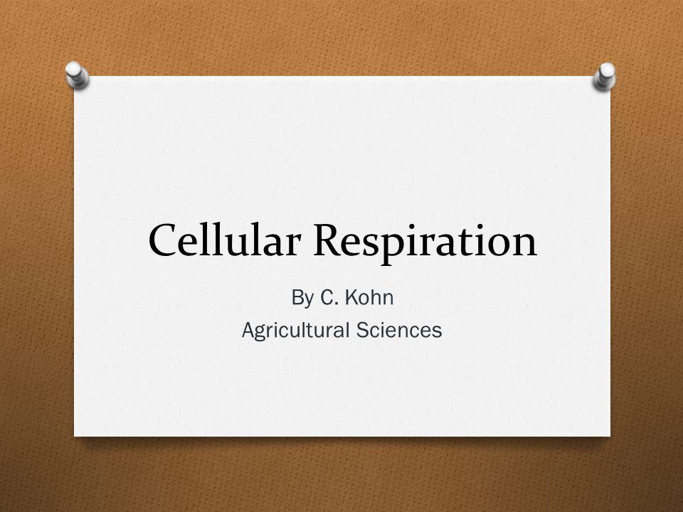 Cellular Respiration By C. Kohn Agricultural Sciences