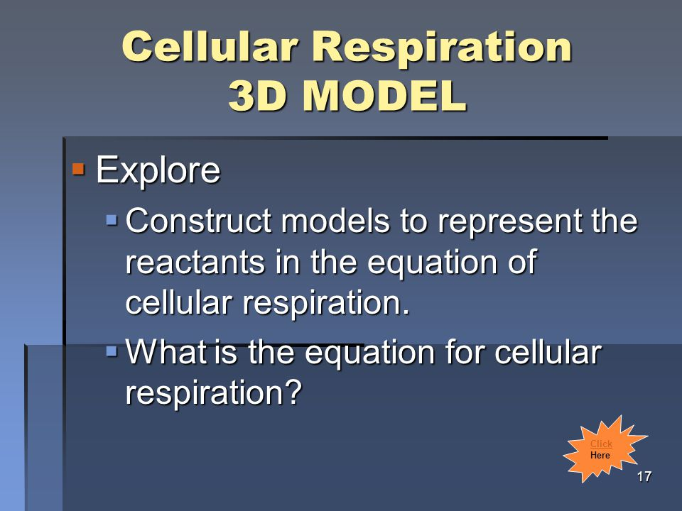 Cellular Respiration 3D MODEL  Explore  Construct models to represent the reactants in the equation of cellular respiration.
