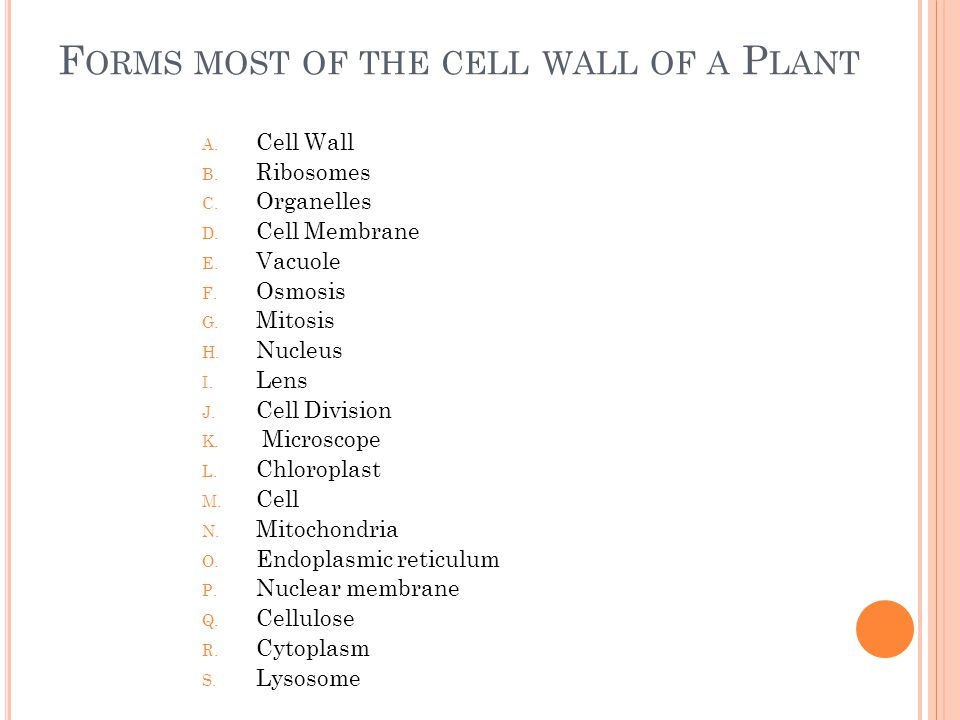 P ROCESS BY WHICH CELLS REPRODUCE A.Cell Wall B. Ribosomes C.