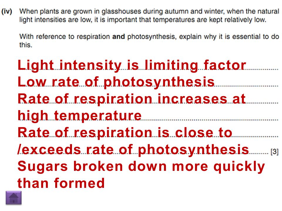 Light intensity is limiting factor Low rate of photosynthesis Rate of respiration increases at high temperature Rate of respiration is close to /exceeds rate of photosynthesis Sugars broken down more quickly than formed