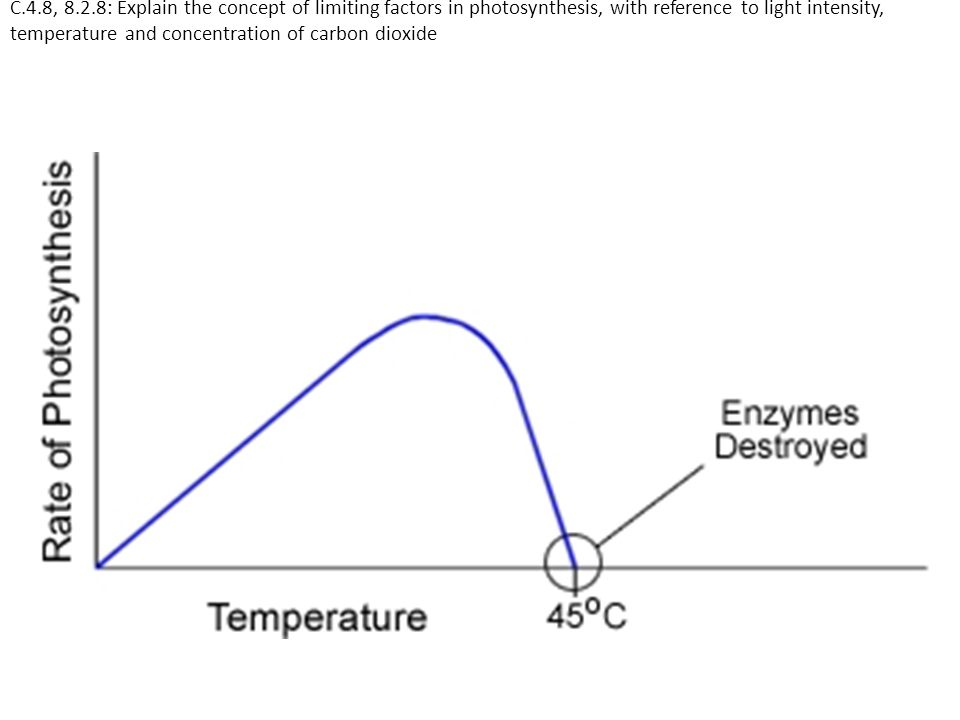 C.4.8, 8.2.8: Explain the concept of limiting factors in photosynthesis, with reference to light intensity, temperature and concentration of carbon di