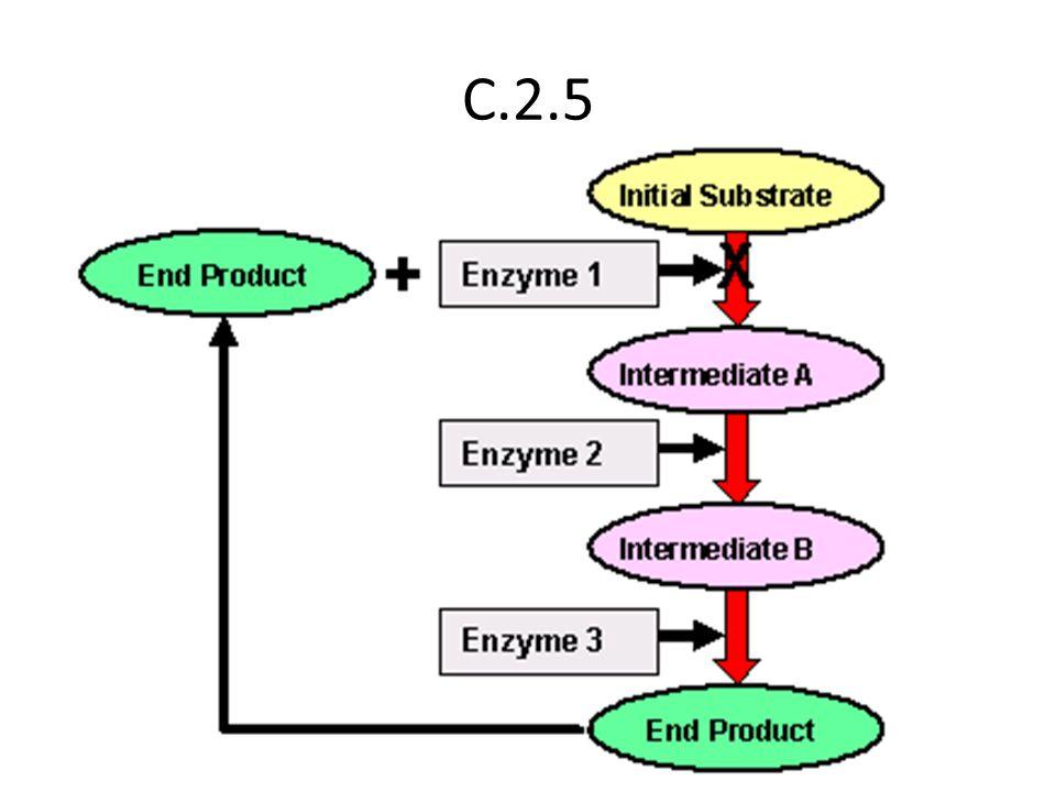 C.2.5