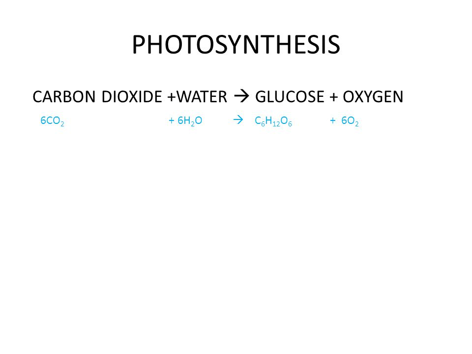 PHOTOSYNTHESIS CARBON DIOXIDE +WATER  GLUCOSE + OXYGEN 6CO 2 + 6H 2 O  C 6 H 12 O 6 + 6O 2
