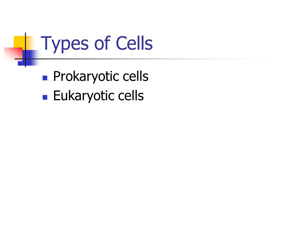 Types of Cells Prokaryotic cells Eukaryotic cells