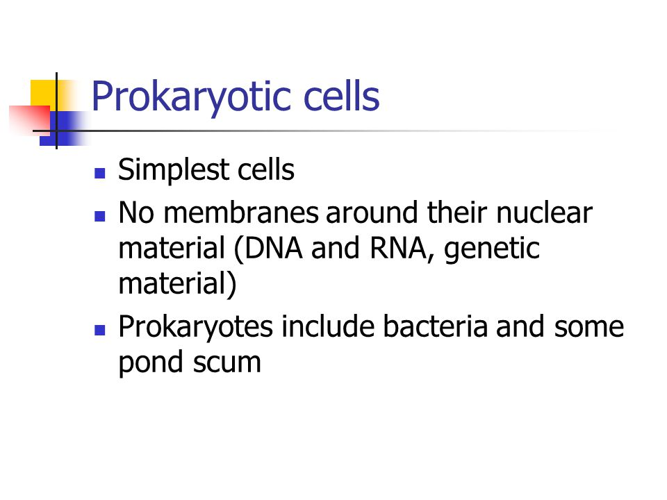 Prokaryotic cells Simplest cells No membranes around their nuclear material (DNA and RNA, genetic material) Prokaryotes include bacteria and some pond