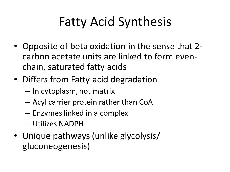 Fatty Acid Synthesis Opposite of beta oxidation in the sense that 2- carbon acetate units are linked to form even- chain, saturated fatty acids Differs from Fatty acid degradation – In cytoplasm, not matrix – Acyl carrier protein rather than CoA – Enzymes linked in a complex – Utilizes NADPH Unique pathways (unlike glycolysis/ gluconeogenesis)