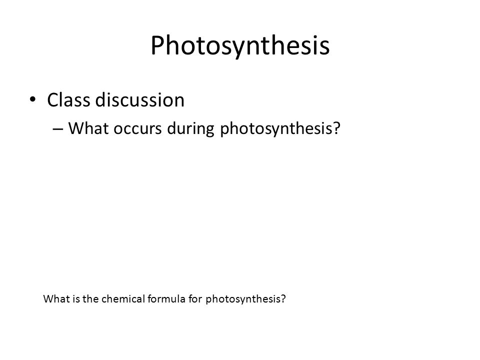 Photosynthesis Class discussion – What occurs during photosynthesis.