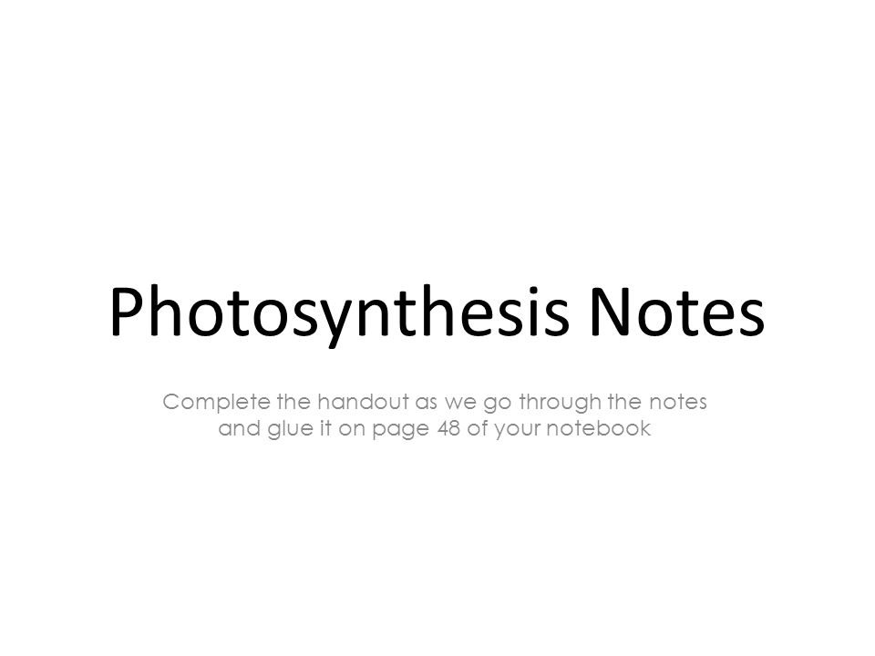 Photosynthesis Notes Complete the handout as we go through the notes and glue it on page 48 of your notebook