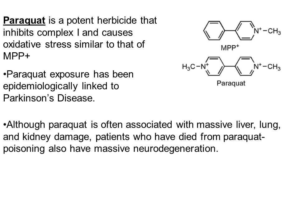 Paraquat is a potent herbicide that inhibits complex I and causes oxidative stress similar to that of MPP+ Paraquat exposure has been epidemiologicall