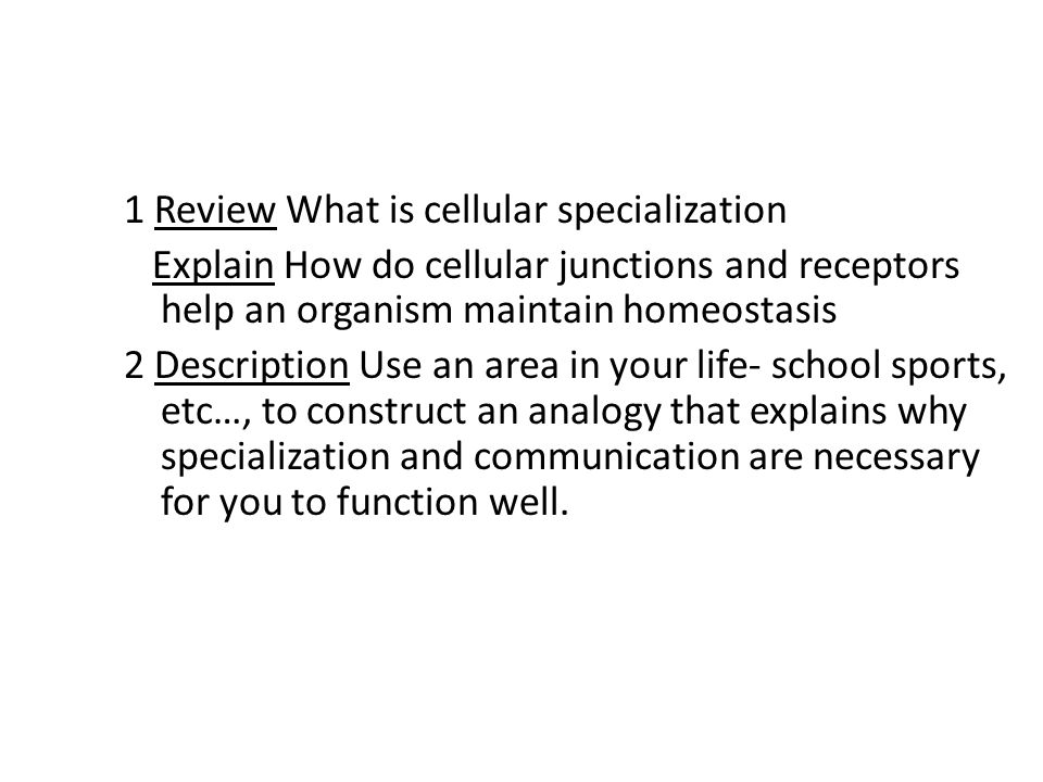 1 Review What is cellular specialization Explain How do cellular junctions and receptors help an organism maintain homeostasis 2 Description Use an ar