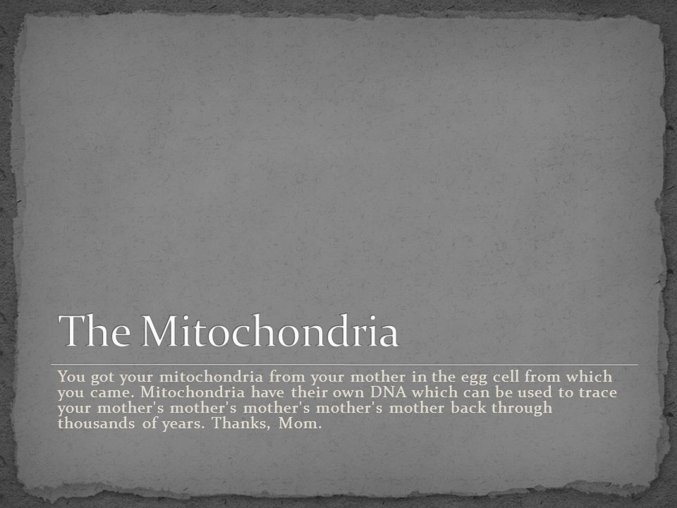 You got your mitochondria from your mother in the egg cell from which you came. Mitochondria have their own DNA which can be used to trace your mother