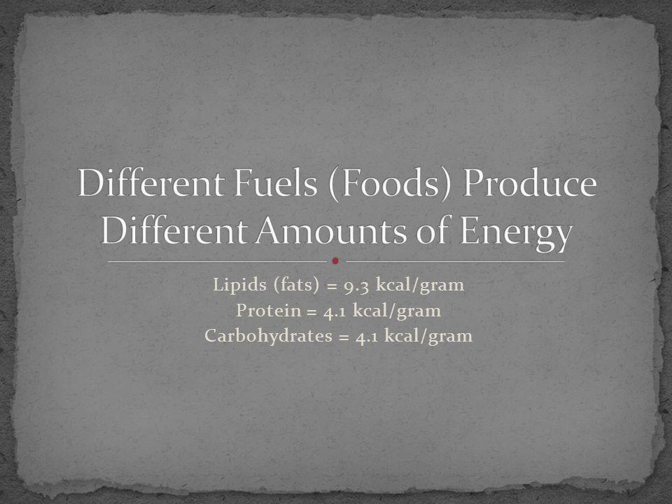Lipids (fats) = 9.3 kcal/gram Protein = 4.1 kcal/gram Carbohydrates = 4.1 kcal/gram
